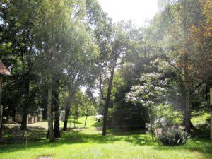 Der Blick in den 7 ha großen Park