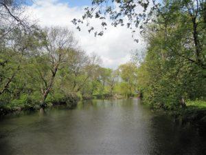 An den nördlichen Teil des Schlosses schließt sich ein Teich an ...