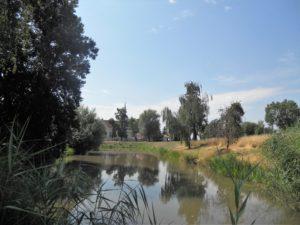 Der Wassergraben umgab einst die gesamte Burganlage. Heute ist nur noch der östliche Teil davon erhalten, der auch durch den angrenzenden Schlosspark führt.