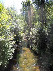 Die Große Röder durchfließt das Tal auf zwei Kilometern Länge.