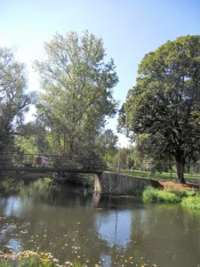 Unterhalb des Burgbergs fließt die Schwennigke.