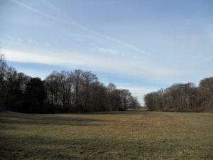 Der Schlosspark wurde mehrfach umgestaltet und entspricht heute dem Stil englischer Landschaftsparks.