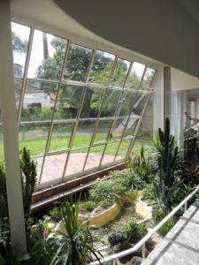 Die Pflanzenecke des Wintergartens mit seinen raumhohen Fenstern