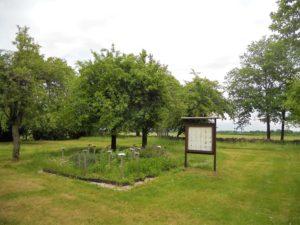 Hinter dem Museum wurde ein Arznei- und Heilpflanzengarten angelegt.